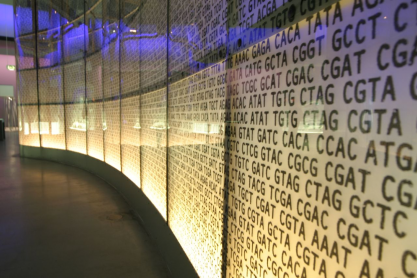 DNA code on display at the Science Museum in London, image by J Goode